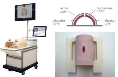 Fig. 1 New computerized system used with the laparoscopic intestinal suturing model (E-Lap) for objective assessment of suturing skills.