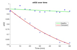 Figure 4: Oxygen saturation levels of healthy and clamped tissues over one hour
